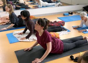 La posture du Cobra - Stage trimestriel de Yoga intégral - Yoga Centre Nanterre